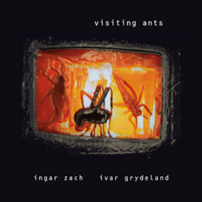 Visiting Ants front cover